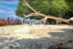 เกาะราวี